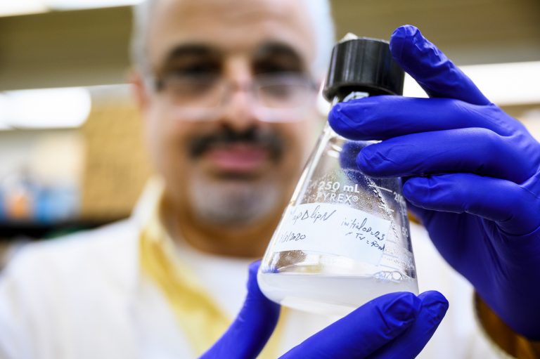 MDTP Trainer Adel Talaat working in the lab in a biomedical research facility at the University of Wisconsin–Madison